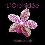 Riad L'Orchidee