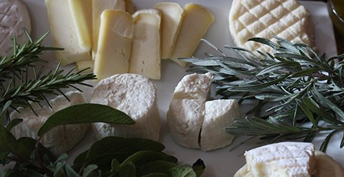 Middle Atlas Cheese Tasting