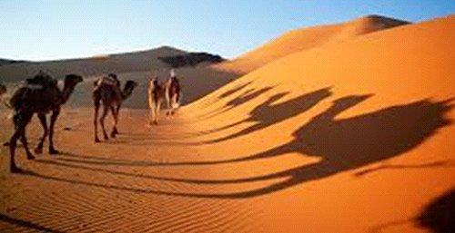 Dades Valley & Sahara
