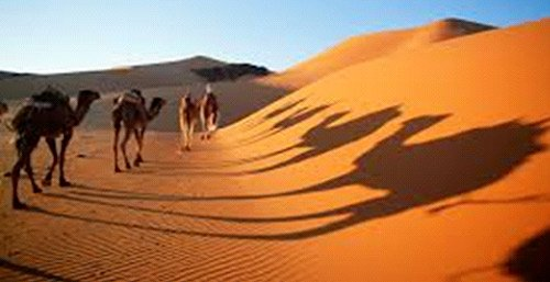 Vallée du Dadès & Sahara