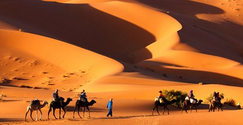 EXCURSION      MERZOUGA