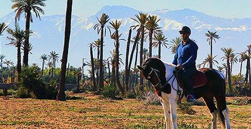 Коњска вожња