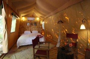 Tent N°1